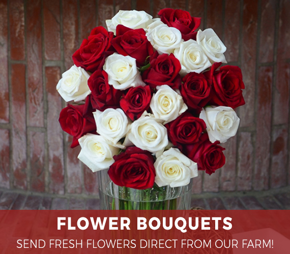 Send Farm Fresh Flowers High Quality Gifts To The