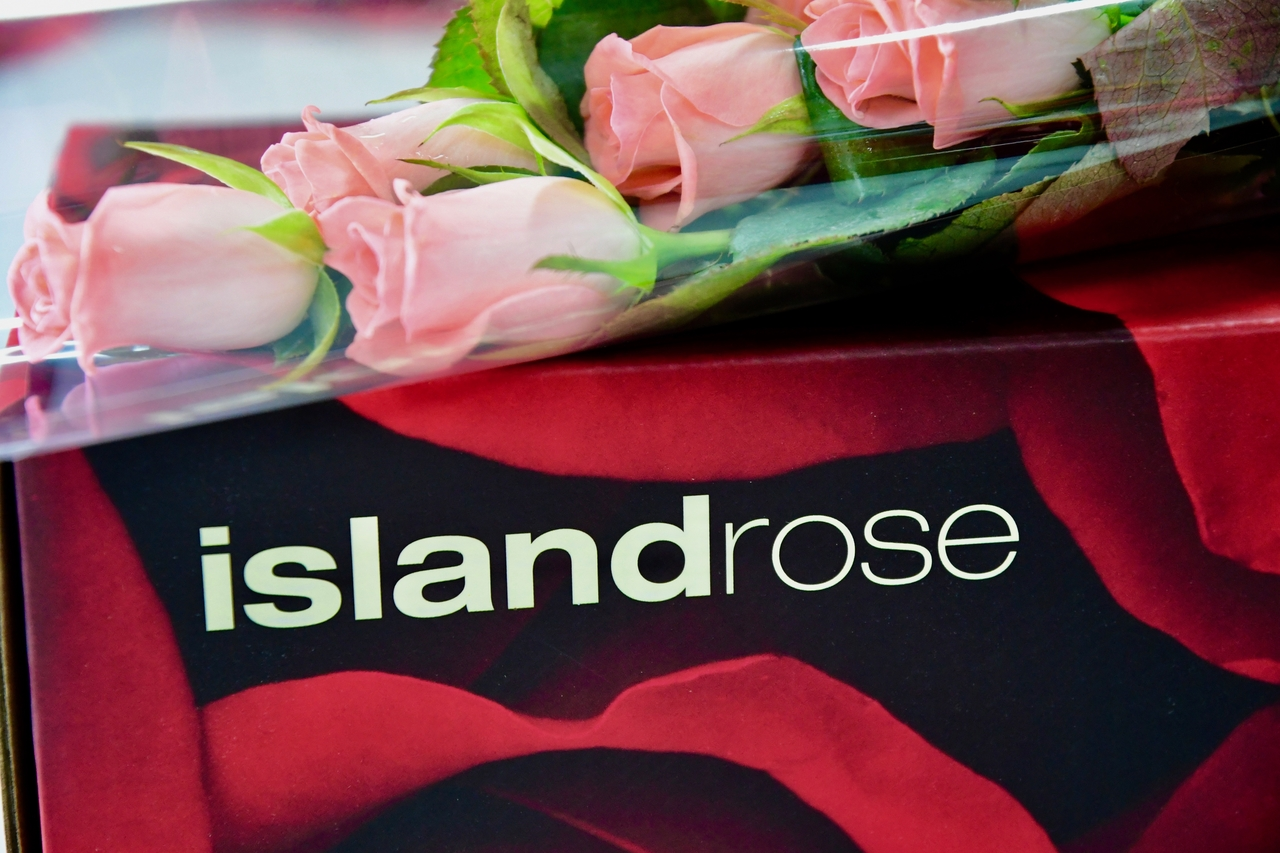 Send Flowers To The Philippines With Island Rose